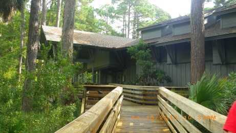 Walk up to Hunting Island Nature Center.